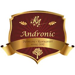 Pensiunea Andronic